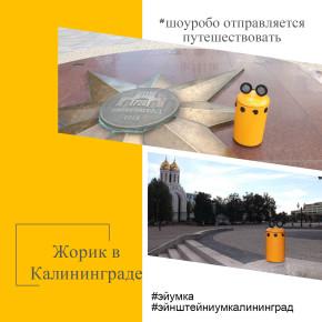 ШОУРОБО отправляется путешествовать по Калининградской области